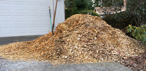 WANTED: Wood chips
