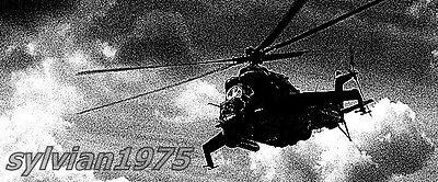 sylvian1975