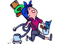 Crazy Cleaners - End of tenancy cleaning, domestic cleaning and ironing services