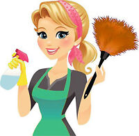 Reliable and Experienced House Cleaner