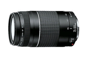 Canon Lens 75-300mm