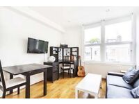 A lovely and bright one bedroom contemporary apartment with wood floors in the hallway and reception