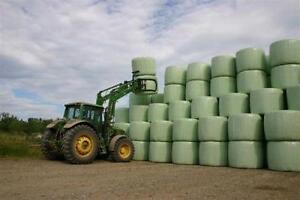 Fine chopped corn or barley silage bales perfect hay replacer