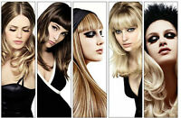 COLOUR,WASH,CUT AND STYLE $89 HIGHLIGHTS,WASH,CUT AND STYLE$99