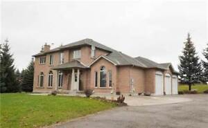 2 Currie Dr