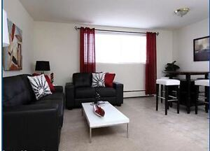 Two Bedroom: Fully renovated, near Wortley Village and Downtown London Ontario image 3
