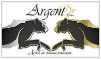 Unité Mobile Achat Or Argent Bijoux Monnaie/Mobile Cash For Gold