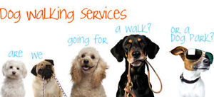 LC's Dog Walking Services