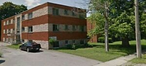 1 BEDROOM APT Niagara,Renovated;Washroom,Kitchen,New Stove+Fridg