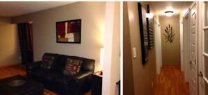 Rooms to rent in student house