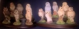 Beautiful set of 13 owls with stands made by for Country Artists by Royal Doulton