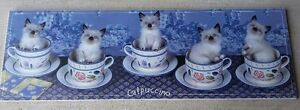 """CATPUCCINO"" 5 CATS IN COFFEE MUG PRINT London Ontario image 1"