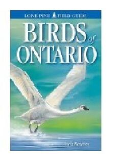 Birds of Ontario by Andy Bezener paperback