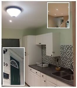 Totally renovated open concept semi detached house