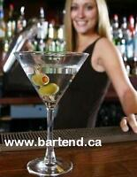 Become a BARTENDER! Only $29.00