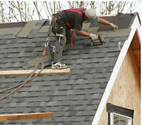 Roofing and trough repairs