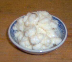 Live milk kefir grains