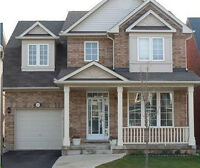 Detached 4 Bedroom with Private Back Yard in Vaughan for Rent
