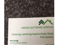 GUTTER CLEANING SERVICES/ SMALL ROOF REPAIRS