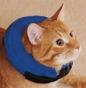 Small Inflatable Soft Cat/Dog Recovery E-collar