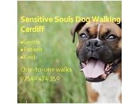 One-to-one dog walking and pet care, Cardiff. Friendly, professional dog walker.