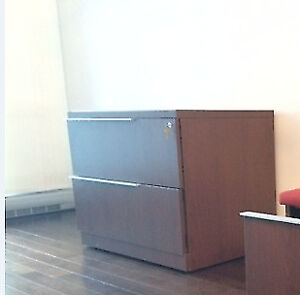 File storage cabinet Steelcase (professional) 149$