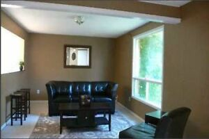 Large Bright Room in All Female House Steps to Stone Rd and Mall