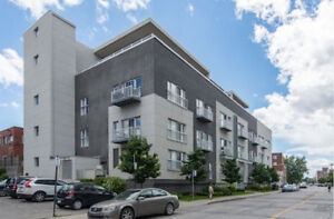 Sunny & Quiet Penthouse in Town of Mount-Royal !