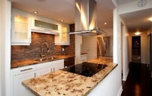 Roommate wanted to share 2 Bdrm 2bath Beautiful Renovated Condo
