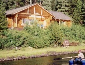 Waterfront Log Home w/4 Cabins Family Retreat
