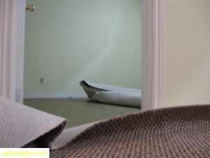 CARPET SALE AND INSTALLATION ,CONSTRUCTION