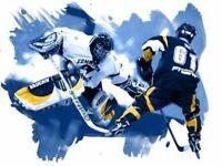 Macclesfield Adult Warriors Elite Inline hockey team need you