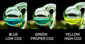 CO2 GLASS DROP CHECKER : MEASURE CO2 LEVELS IN A PLANTED TANK