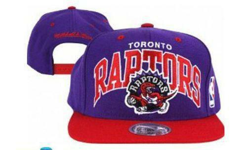 0b4f7a38894 Raptors Snapback  Basketball-NBA