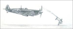 RAF Spitifre print signed by 3 Battle of Britain 234 Squadron pilots inc Bob Doe