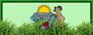 Summer Lawn Services and more