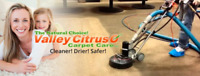 Fraser Valley's Best Carpet Cleaning - Special Rates on Now!