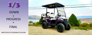 NXT Custom Golf Cart R4-Purple Panther