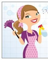 The Cleaning Ladies.... Home & Office