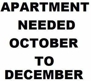 WANTED APARTMENT TO RENT OCT TO DEC