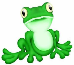 Fun Frog Face Painting, Glitter Tatts and Bubblology East Cannington Canning Area Preview