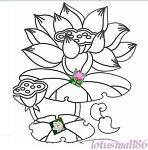 lotusmall86