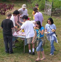 URGENT WANTED! Host families, Japanese youth, London 2016 Summer