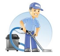 CARPET CLEANING PLUS -  windows, cars, homes, yards