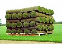 90 x Rolls of Premium Turf - Collection or delivery