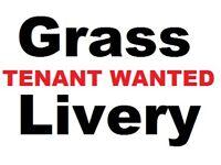 7 Acres Grass Livery