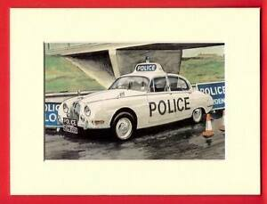1967 Jaguar S Type Police Car Ready To Frame Print Panda Car Art