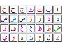 Arabic Lessons Tutor /Translator/(standard Arabic or certain dialects) All Ages & Levels