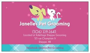Janelle's Pet Grooming - Dieppe and surrounding areas