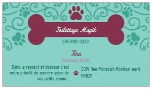 Toilettage chat et chien cat and dig grooming